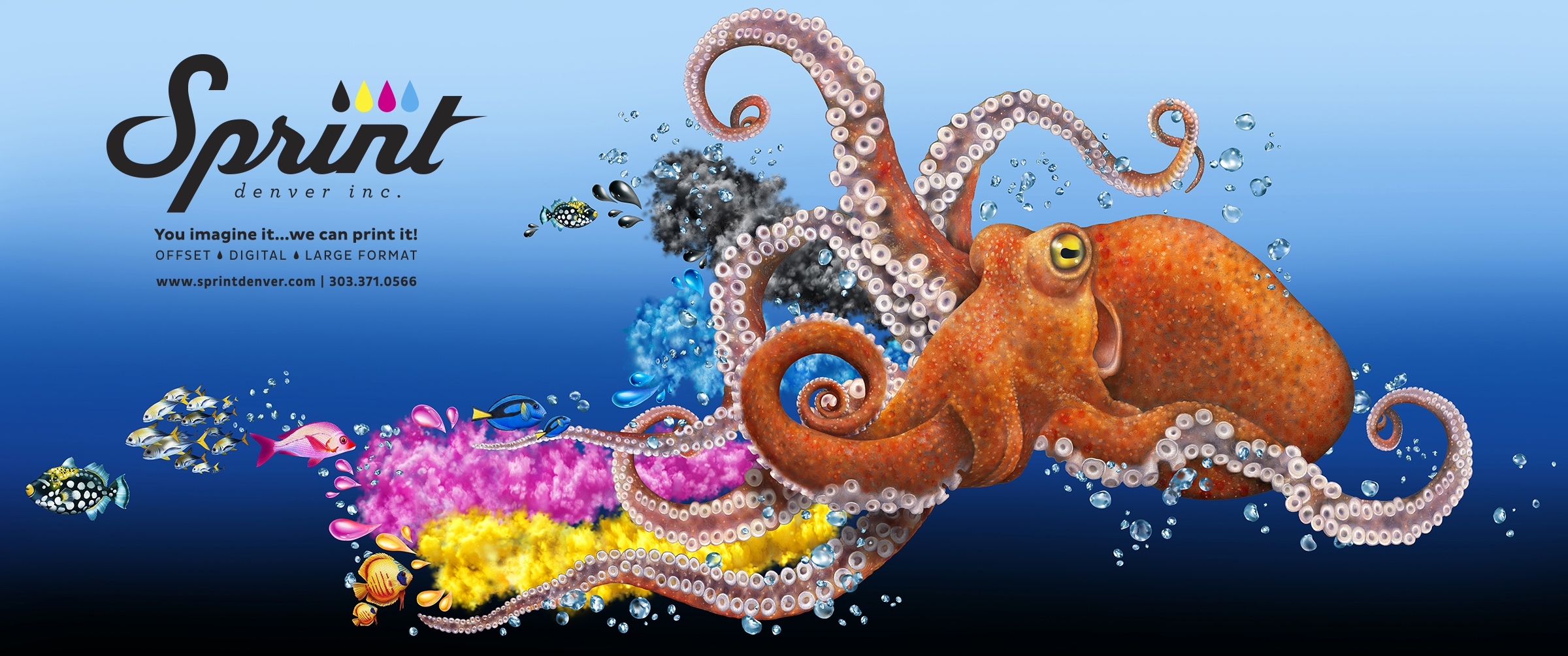 Sprint_Octopus_00_FLAT_lead